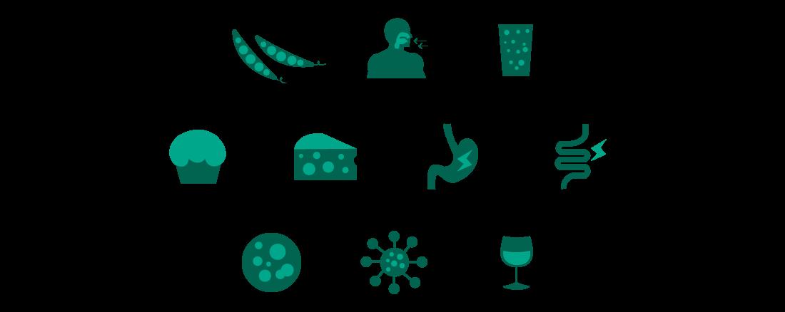 Hepar-SL Icons