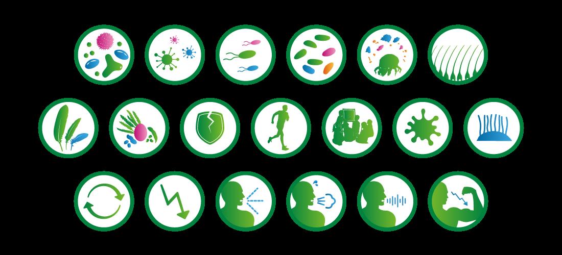 Soledum Icons